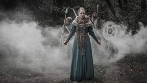 Příběhy… : Vikingové